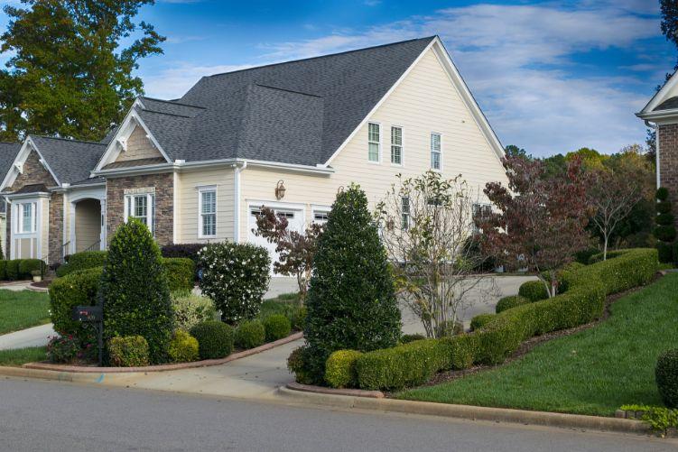 Blenheim Homes for Sale